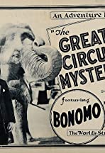 The Great Circus Mystery