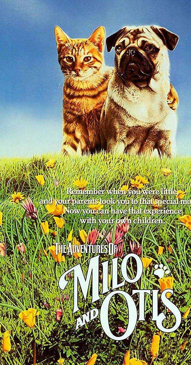 Oscar And Milo Cat And Dog Movie