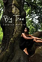 Candice Anitra: Big Tree