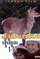 Image of Jelenko