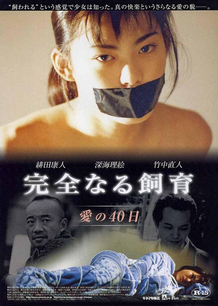 Perfect Education 2 40 Days of Love (2001)