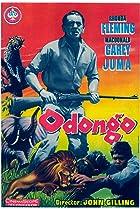 Image of Odongo