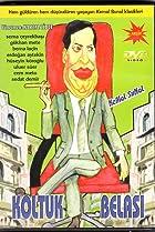 Image of Koltuk Belasi