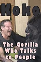 Image of Koko: The Gorilla Who Talks to People