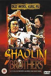 Shao Lin gong fu Poster