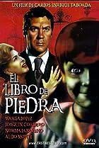 Image of El libro de piedra