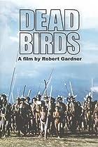 Image of Dead Birds