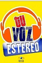 Image of Tu voz estéreo