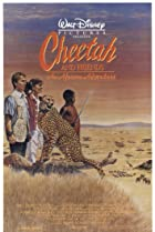 Image of Cheetah