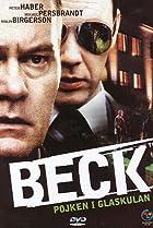Image of Beck: Pojken i glaskulan