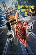 Image of Homeward Bound II: Lost in San Francisco