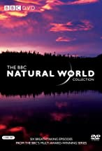 Primary image for Natural World