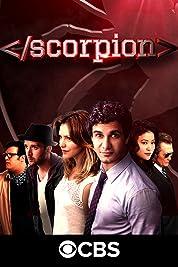 Scorpion - Season 1 poster
