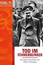 Image of Death in the Bunker: The True Story of Hitler's Downfall