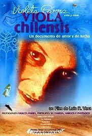 Viola Chilensis Poster