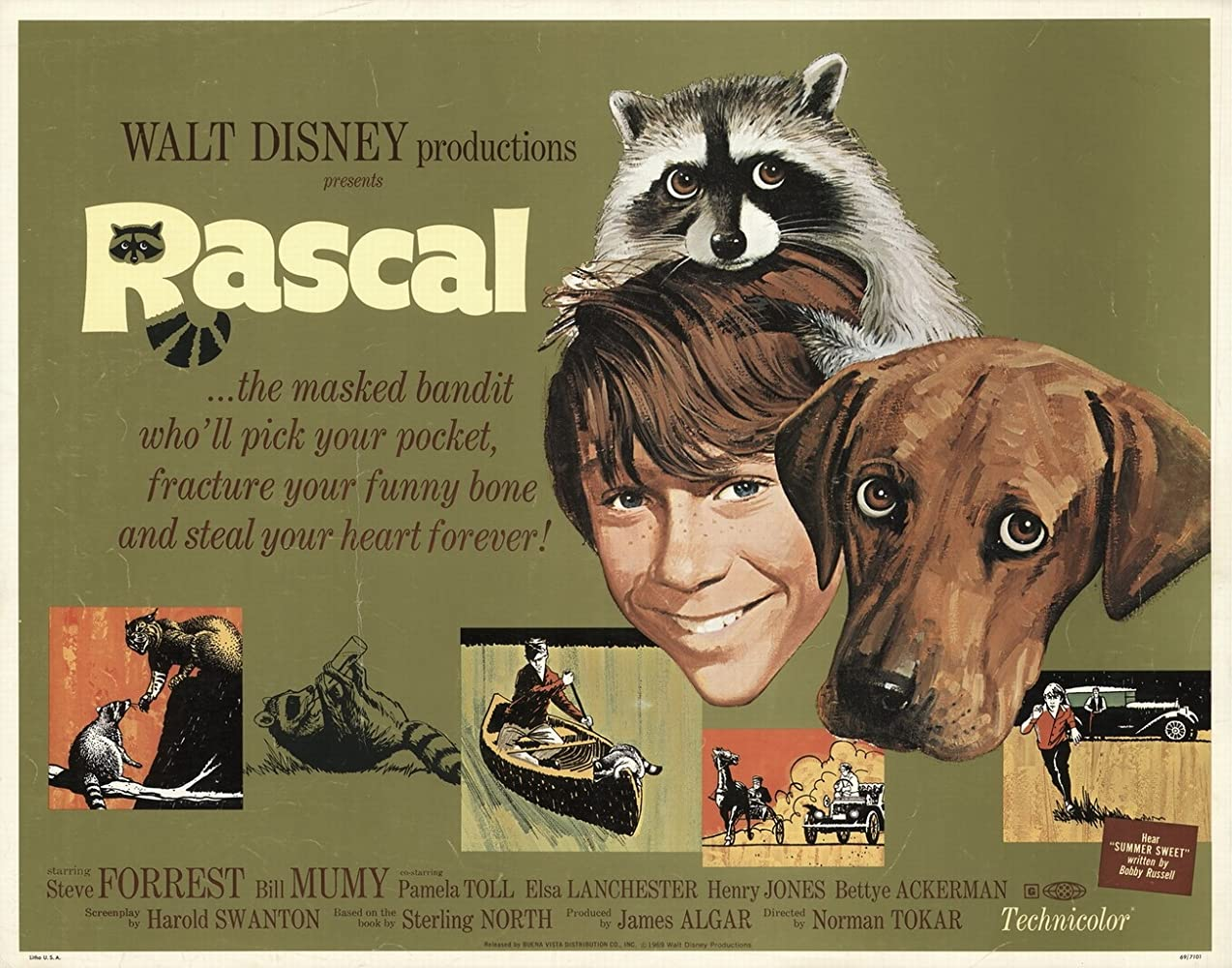 Image result for Rascal 1969