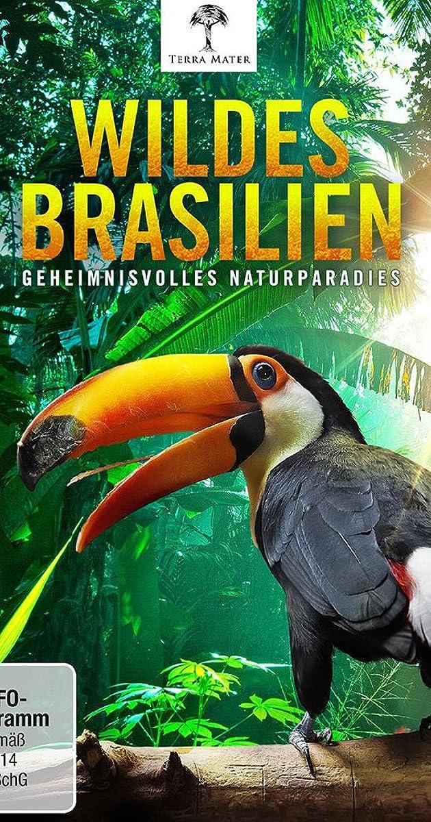 Brazilijos gamtos stebuklai (1 Sezonas) / Brazil a Natural History (Season 1) (2014-2015)