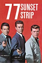 Image of 77 Sunset Strip: The Widow and the Web