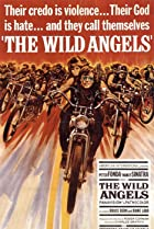 Image of The Wild Angels