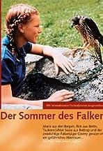 Der Sommer des Falken