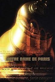 Notre Dame de Paris - Live Arena di Verona Poster