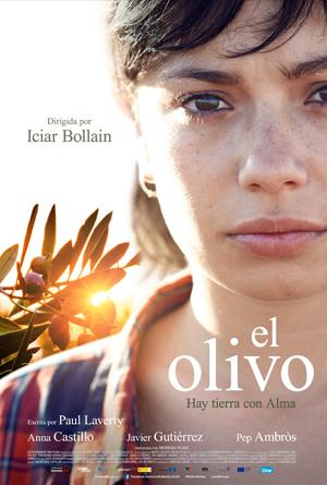 El olivo - 2016