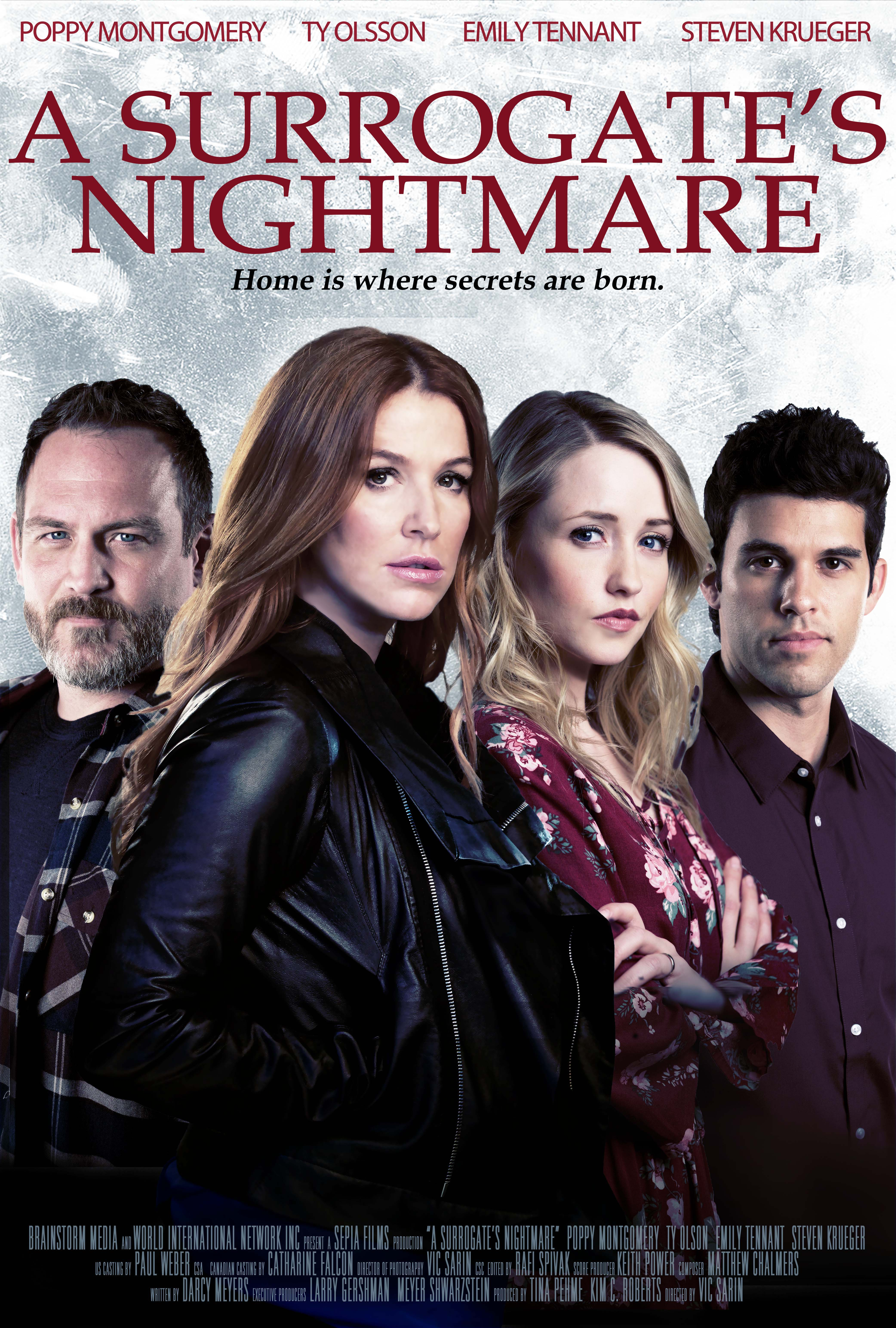 image A Surrogate's Nightmare (2017) (TV) Watch Full Movie Free Online