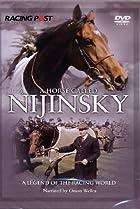 Image of A Horse Called Nijinsky