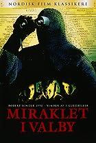 Image of Miraklet i Valby