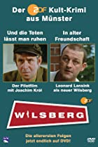 Image of Wilsberg