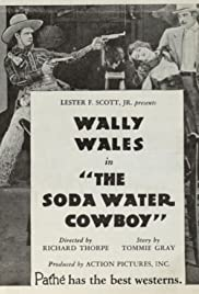 The Soda Water Cowboy Poster