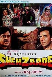 Shehzaade Poster