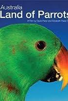 Image of Australia: Land of Parrots