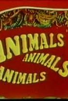 Image of Animals, Animals, Animals