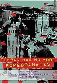 Tehran Has No More Pomegrenates! Poster