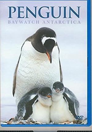 Penguin Baywatch Antarctica (2005)