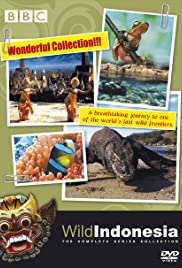 Creatures of Island Kingdoms Poster