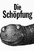 Image of Die Schöpfung