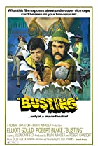 Image of Busting