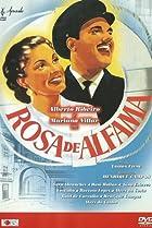 Image of Rosa de Alfama