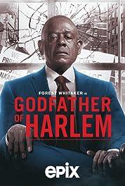 Godfather of Harlem - Season 2 (2021) poster