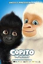 Primary image for Snowflake, the White Gorilla