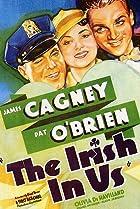 Image of The Irish in Us