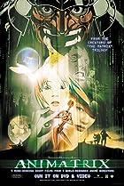 Image of The Animatrix