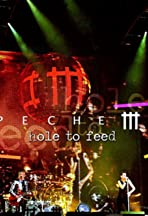 Depeche Mode: Hole to Feed