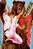Image of Karate Bear Fighter