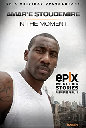 Amar'e Stoudemire: In the Moment (2013)