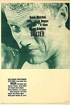 Image of Bokser