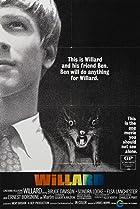 Image of Willard