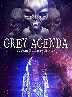 Grey Agenda(2017)